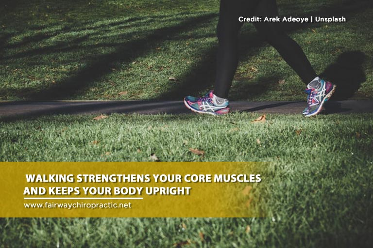 Walking-strengthens-your-core-muscles